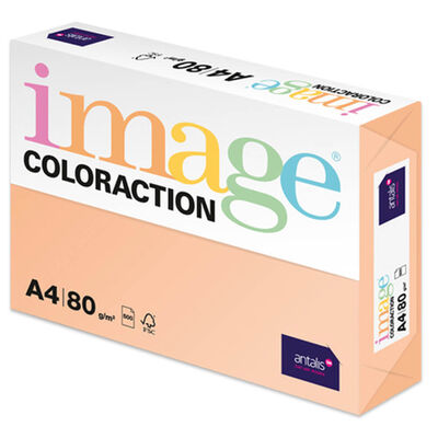 A4 Pale Salmon Savana Image Coloraction Copy Paper: 500 Sheets image number 1