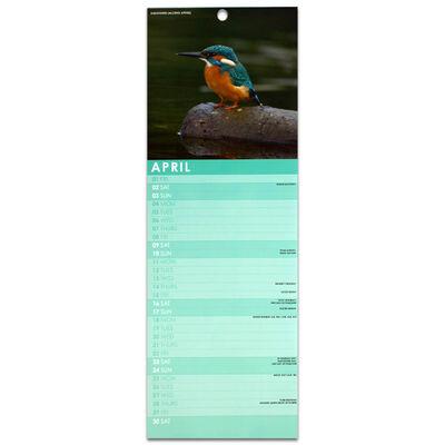 British Birds 2022 Slim Calendar and Diary Set image number 2