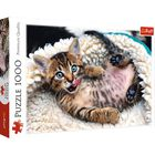 Cheerful Kitten 1000 Piece Jigsaw Puzzle image number 1