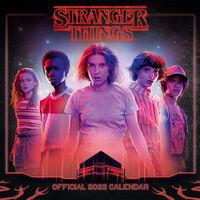 Official Stranger Things 2022 Square Calendar