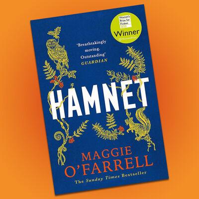 Hamnet image number 2