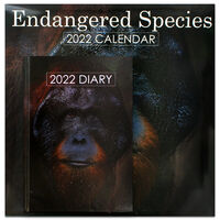 Endangered Species 2022 Square Calendar and Diary Set
