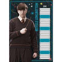 Harry Potter Change It Up Official A3 Calendar 2021