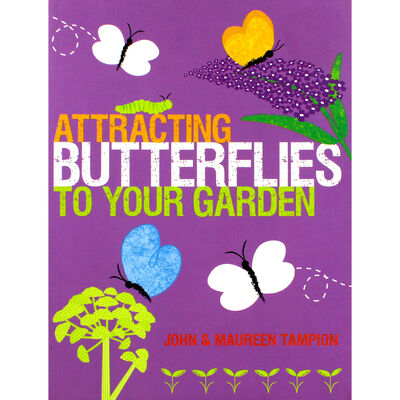 Attracting Butterflies To Your Garden image number 1