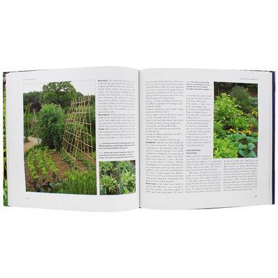 Creative Vegetable Gardening image number 3