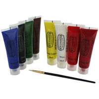 Complete Acrylic Paint and Brush Set