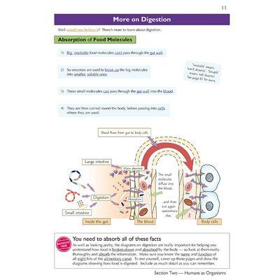 KS3 Science Complete Study & Practice: Higher Level image number 3