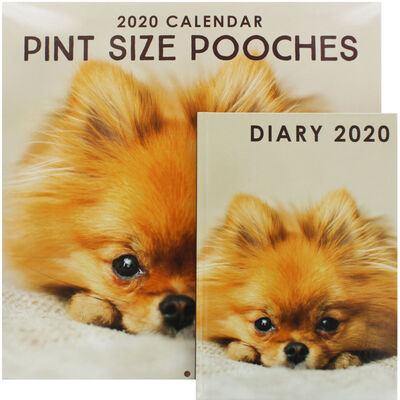 Pint Size Pooches 2020 Calendar and Diary Set image number 1