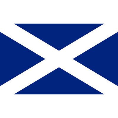 Scotland Super Flag - 8x5ft image number 2