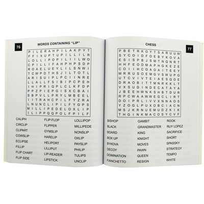 Large Print Wordsearch - 100 Easy to Read Puzzles image number 2