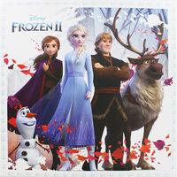 Disney Frozen 2 Collapsible Storage Box