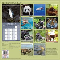 Endangered Species 2021 Calendar and Diary Set