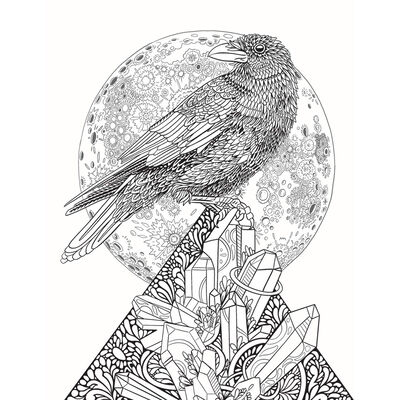 Believe in Magic: An Enchanting Colouring Book image number 2