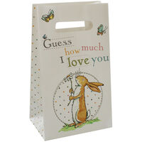 Guess How Much I Love You Party Bags - Pack of 5