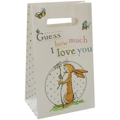 Guess How Much I Love You Party Bags - Pack of 5 image number 2