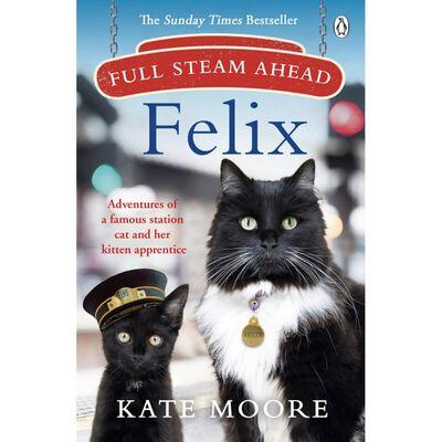 Full Steam Ahead, Felix image number 1