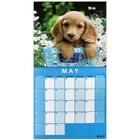 Cute Dogs 2022 Square Calendar and Diary Set image number 2