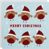 Cute Robin Christmas Cards - Pack Of 10