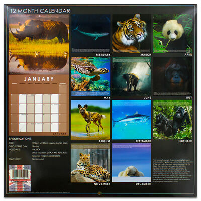 Endangered Species 2022 Square Calendar and Diary Set image number 4