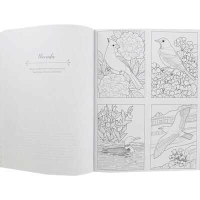 Birds at Home Coloring Book image number 2