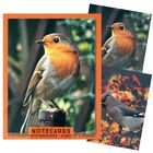 Assorted Traditional Notecards: Pack of 8 image number 4