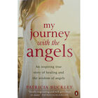 My Journey with the Angels image number 1
