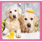 50 Piece 3 in 1 Dogs Jigsaw Puzzle image number 3