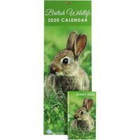 British Wildlife 2020 Slim Calendar and Diary Set