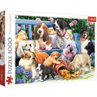 Dogs in the Garden 1000 Piece Jigsaw Puzzle image number 1