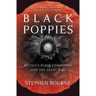 Black Poppies: Britain's Black Community and the Great War image number 1