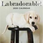 Labradorable 2020 Square Calendar image number 1