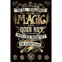 Harry Potter Magic Wall Poster