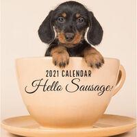 2021 Calendar: Hello Sausage