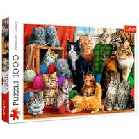 Feline Meeting 1000 Piece Jigsaw Puzzle
