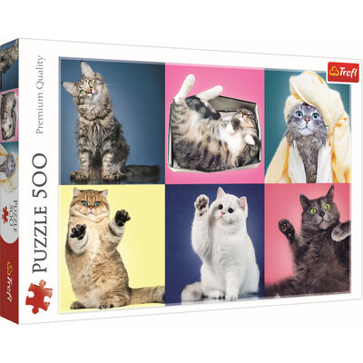 Kitten 500 Piece Jigsaw Puzzle image number 1