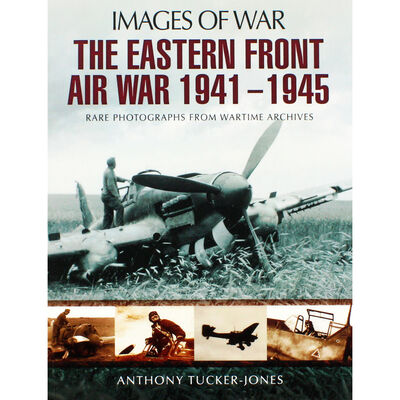The Eastern Front Air War 1941-1945 image number 1