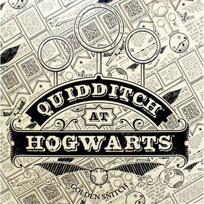 Harry Potter Quidditch Collapsible Storage Box image number 3