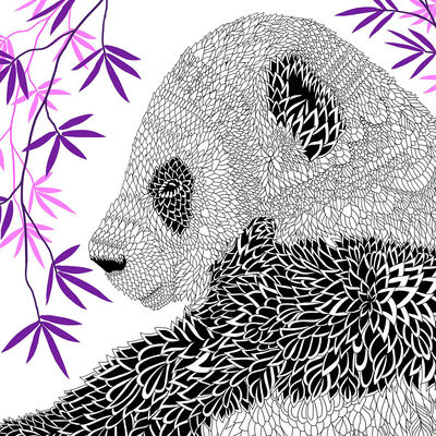 The Menagerie: Animal Portraits to Colour image number 2