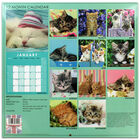 Cute Cats 2022 Square Calendar and Diary Set image number 4