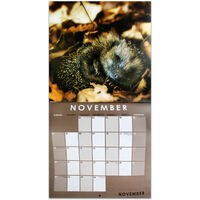 British Wildlife 2022 Square Calendar and Diary Set