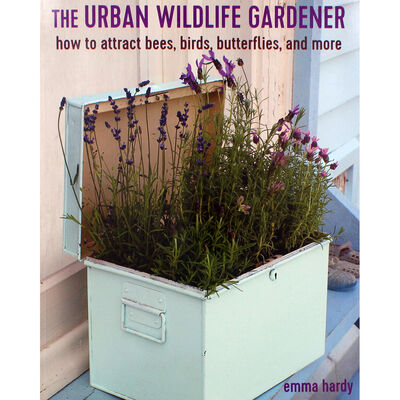 The Urban Wildlife Gardener image number 1