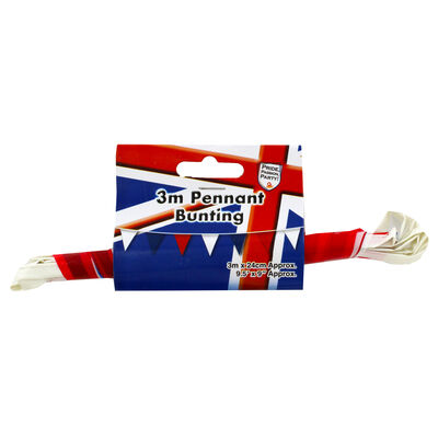 Red, White and Blue 3m Pennant Bunting image number 1