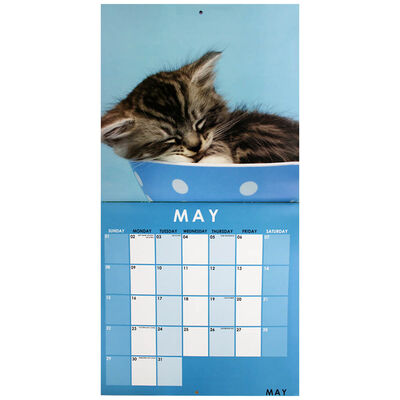 Cute Cats 2022 Square Calendar and Diary Set image number 2