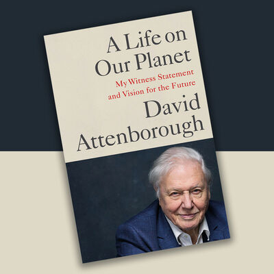David Attenborough: A Life on Our Planet image number 2