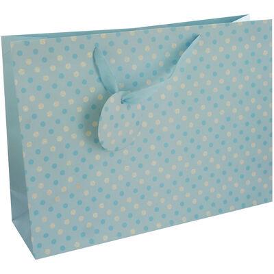 Baby Blue Spot Medium Landscape Gift Bag image number 1