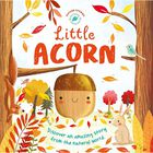 Nature Stories: Little Acorn image number 1