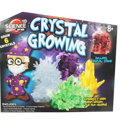 Crystal Growing Kit image number 2