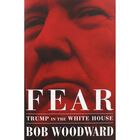 Fear: Trump in the Whitehouse image number 1