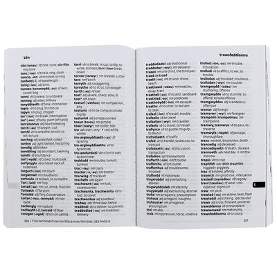 Collins Spurrell Welsh Dictionary: Pocket Edition image number 2