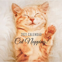 2021 Calendar: Cat Napping